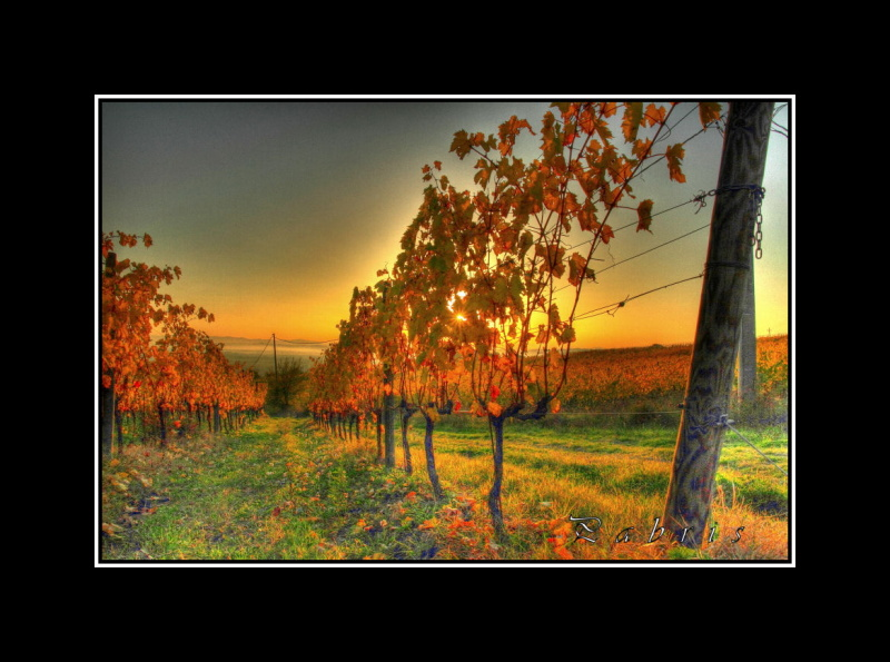 Autunno in hdr